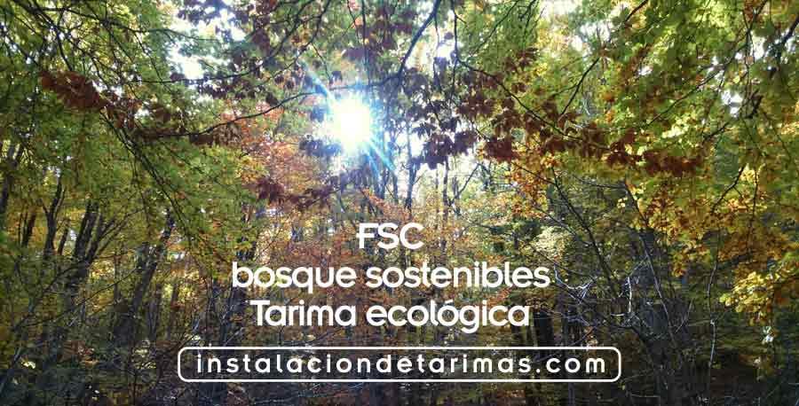 foto de un bosque con el texto FSC, bosques sostenibles, tarima ecologica e instalaciondetarimas.com