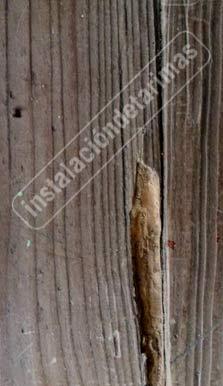 foto de tarima de pino que no es una tarimas resistentes a la carcoma